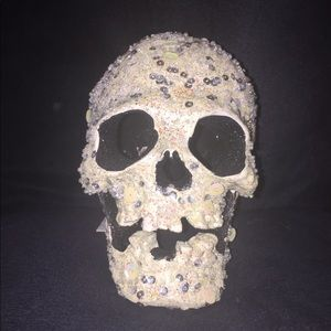 Katherine's Collection At Silver Lake Skull